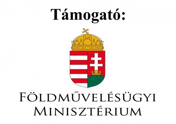 tamogato_fm